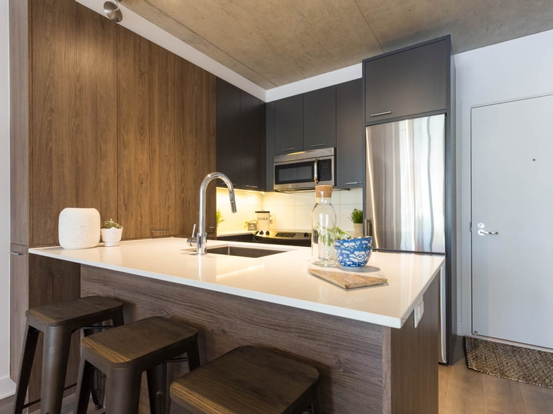 luxurious Studio / Bachelor Apartments for rent in Montreal (Downtown) at Appartements-Boutique - Photo 02 - RentQuebecApartments – L136675