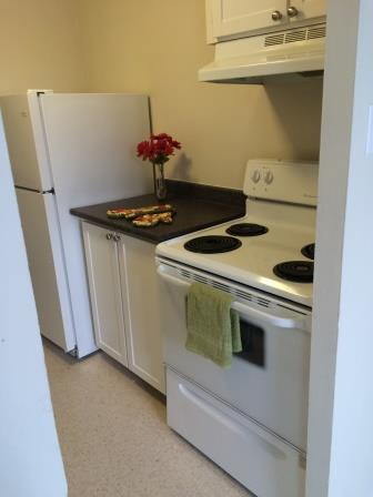 Studio / Bachelor Apartments for rent in Gatineau-Hull at Habitat du Lac Leamy - Photo 03 - RentQuebecApartments – L9125