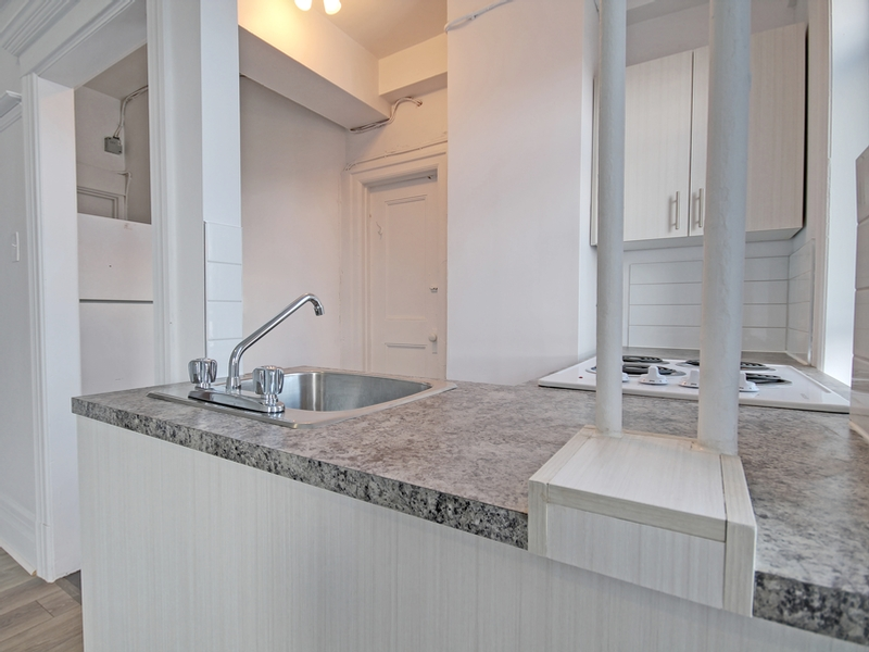 Studio / Bachelor Apartments for rent in Montreal (Downtown) at La Belle Epoque - Photo 07 - RentQuebecApartments – L401903