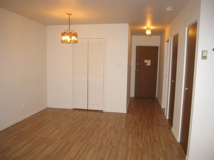 Studio / Bachelor Apartments for rent in Ville St-Laurent - Bois-Franc at Plaza Oasis - Photo 04 - RentQuebecApartments – L403727