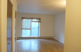 Studio / Bachelor Apartments for rent in Ville St-Laurent - Bois-Franc at Plaza Oasis - Photo 01 - RentQuebecApartments – L403727