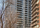 1 bedroom Apartments for rent in Montreal (Downtown) at The Shaughn - Photo 01 - RentQuebecApartments – L406288