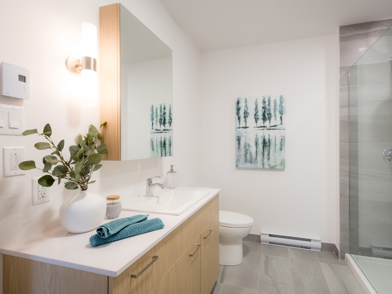 1 bedroom Apartments for rent in Boucherville at Le Filips - Photo 03 - RentQuebecApartments – L401578