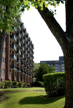furnished Studio / Bachelor Apartments for rent in Pointe-Claire at Southwest One - Photo 08 - RentQuebecApartments – L21538