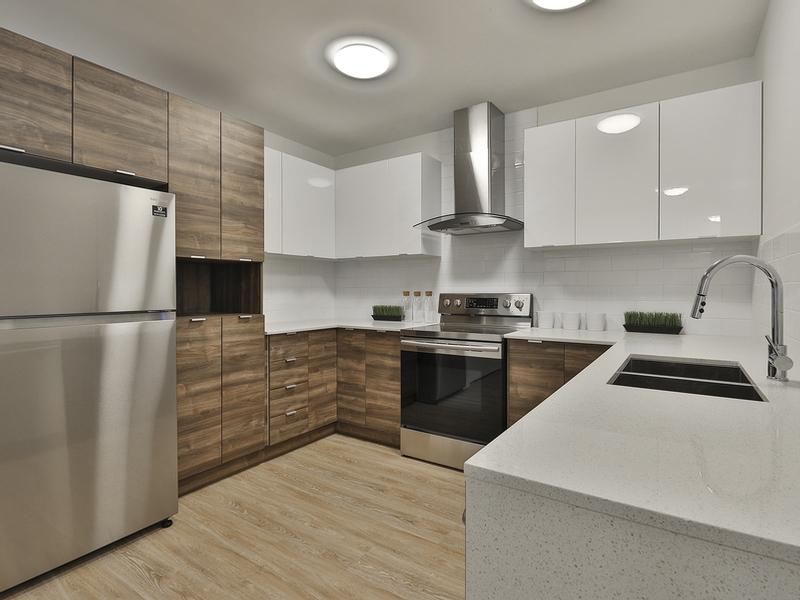 Studio / Bachelor Apartments for rent in Ville St-Laurent - Bois-Franc at Vita - Photo 07 - RentQuebecApartments – L405441