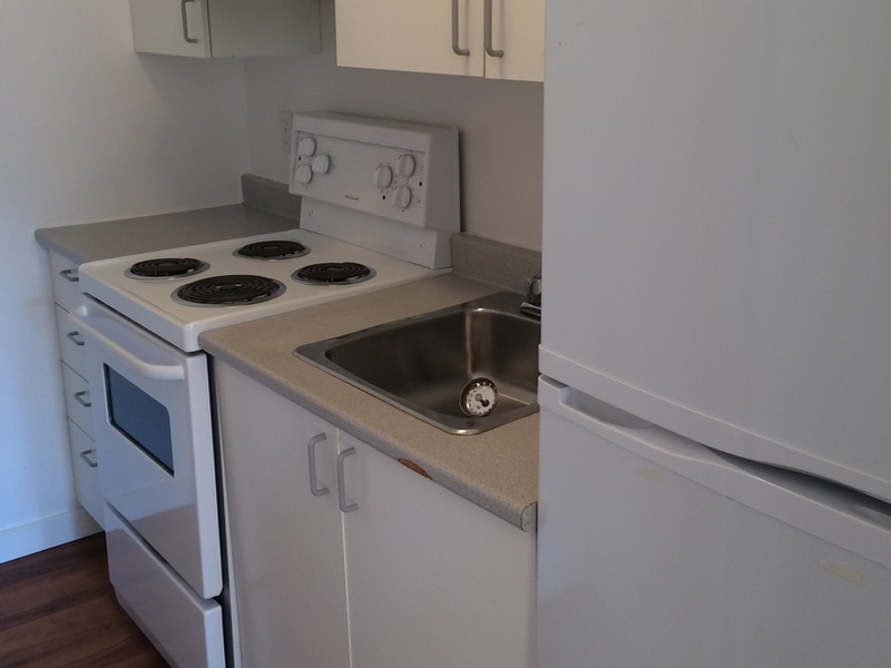 Studio / Bachelor Apartments for rent in Montreal (Downtown) at Aylmer - Photo 02 - RentQuebecApartments – L168577