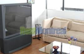 2 bedroom Apartments for rent in Pierrefonds-Roxboro at Marina Centre - Photo 01 - RentQuebecApartments – L581