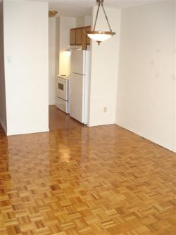 Studio / Bachelor Apartments for rent in Ville St-Laurent - Bois-Franc at Chateau Lise - Photo 02 - RentQuebecApartments – L6539