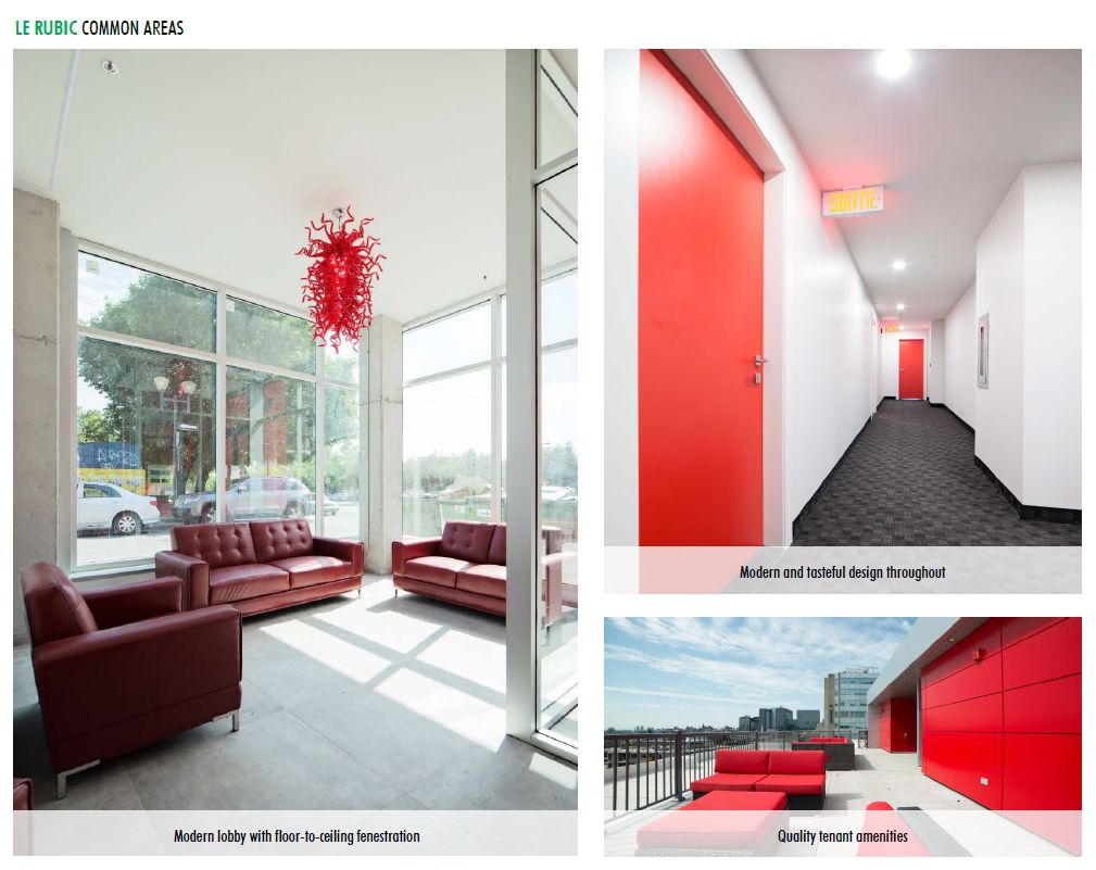 luxurious 1 bedroom Apartments for rent in Montreal (Downtown) at Le Rubic - Photo 05 - RentQuebecApartments – L198455