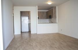 1 bedroom Apartments for rent in Ville St-Laurent - Bois-Franc at Plaza Oasis - Photo 01 - RentQuebecApartments – L605
