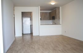 1 bedroom Apartments for rent in Ville St-Laurent - Bois-Franc at Plaza Oasis - Photo 01 - RentQuebecApartments – L605