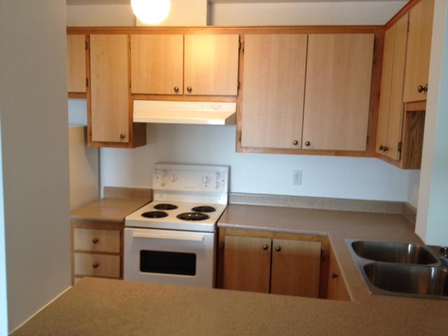 1 bedroom Apartments for rent in Ville St-Laurent - Bois-Franc at Plaza Oasis - Photo 08 - RentQuebecApartments – L605