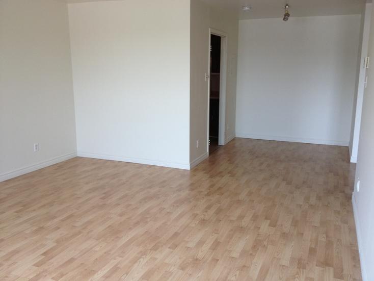 1 bedroom Apartments for rent in Ville St-Laurent - Bois-Franc at Plaza Oasis - Photo 10 - RentQuebecApartments – L605