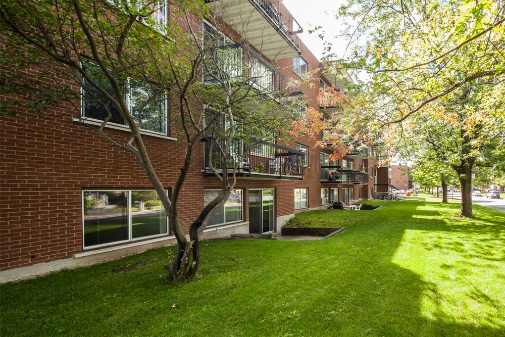 1 bedroom Apartments for rent in Chateauguay at Pasteur - Photo 05 - RentQuebecApartments – L9511