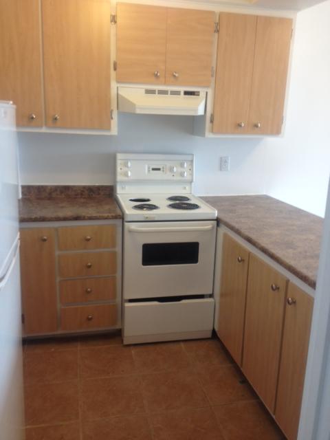 Studio / Bachelor Apartments for rent in Ville St-Laurent - Bois-Franc at 2775 Modugno - Photo 04 - RentQuebecApartments – L138864