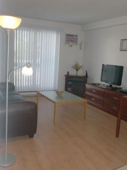 furnished 1 bedroom Apartments for rent in Longueuil at 555 du Roussillon - Photo 02 - RentQuebecApartments – L5893